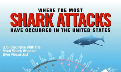 where-most-shark-attacks-occur-chartistry-thumb-2